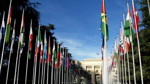 Un stage à l'ONU : l'expérience en vaut-elle le coût ?