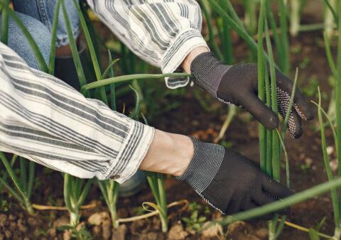 Ways Consumer Trends Impact Your Farm